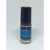 Stretch Mark and Scar roll on Oil 5ml